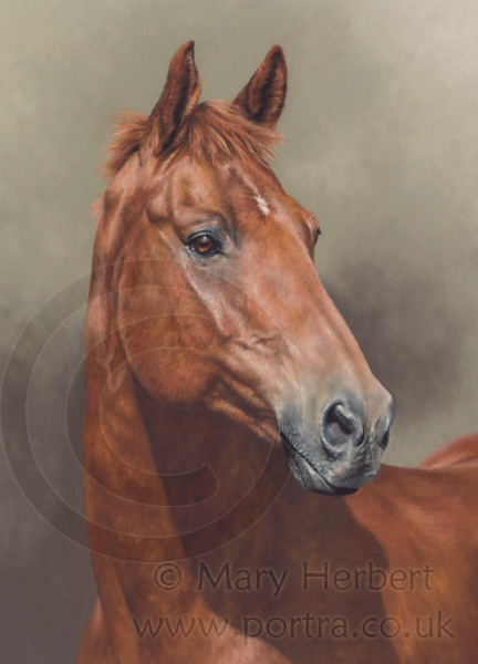 The gallery for --> Realistic Horse Paintings