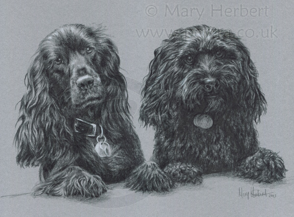 two dogs sketch portrait by Mary Herbert